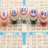 Online Bingo Craze