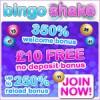 Bingo Shake