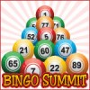 Bingo Summit